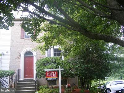 Beltsville Rental For Rent: 6711 Ammendale Way