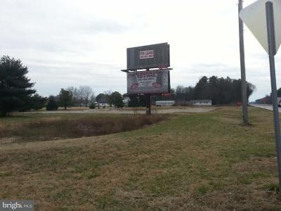 Lincoln Residential Lots & Land For Sale:  S Dupont Highway