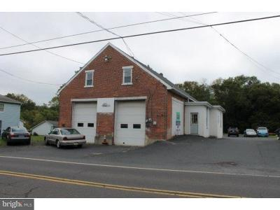 Bucks County Commercial For Sale: 2131/37 Allentown Road