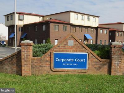 Ellicott City Condo For Sale: 3207 Corporate Court #4-A