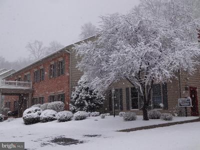 Mercersburg Condo For Sale: 14201 Barberry Circle #107