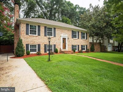 Fairfax County Single Family Home For Sale: 2004 Cool Spring Drive