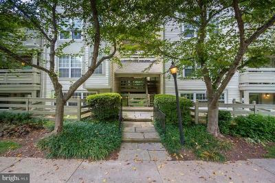 Reston, Herndon Townhouse For Sale: 11717 Karbon Hill Court #707B