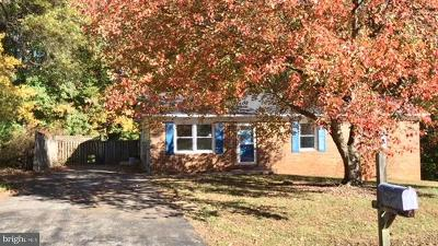 Mechanicsville Single Family Home For Sale: 26894 Redgate Drive