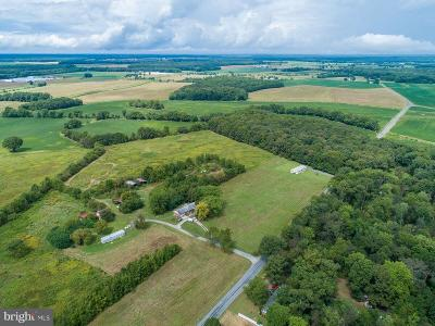 Caroline County Farm For Sale: 16934 Diggins Road