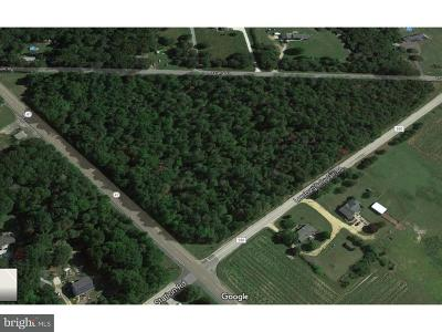 Residential Lots & Land For Sale: Leesburg Belleplain Road