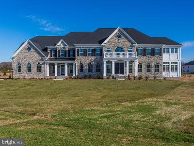 Centreville Single Family Home For Sale: 6647 Tackhouse Trail