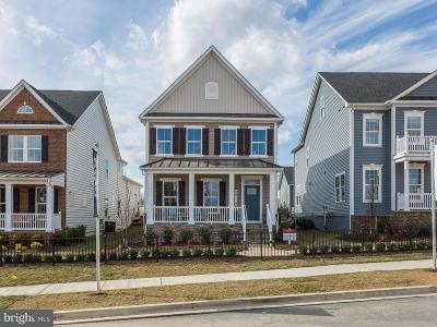 Clarksburg Single Family Home For Sale: 22005 Moorhen Street