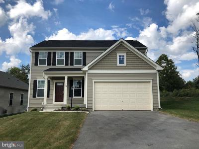 Frederick County Single Family Home For Sale: 113 Thorny Crown Lane