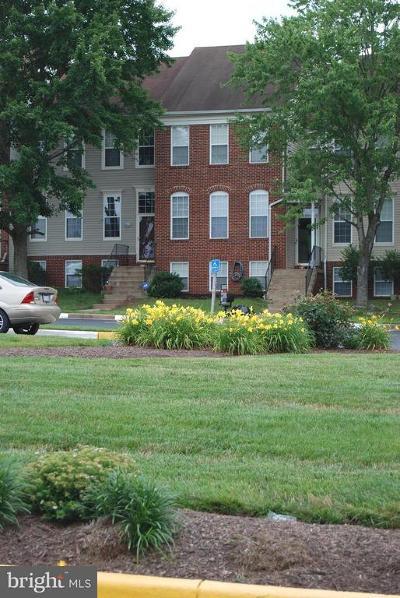 Centreville Rental For Rent: 5711 Belcher Farm Drive