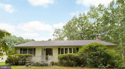 Fauquier County Single Family Home For Sale: 12523 Tower Hill Road