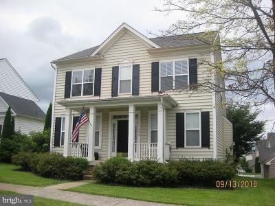 Charles Town Single Family Home For Sale: 308 Calmes Street