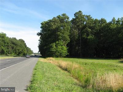 Frankford Residential Lots & Land For Sale: 43 W Dupont Highway