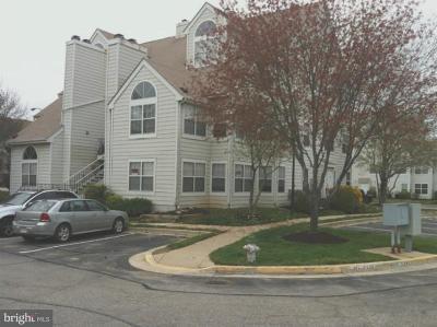 Laurel Rental For Rent: 14012 Vista Drive #16