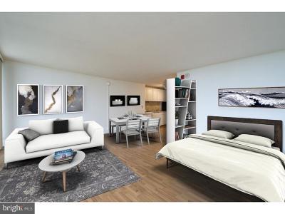 Philadelphia Single Family Home For Sale: 3900 Ford Road #18J