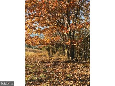 Bucks County Residential Lots & Land For Sale: 00 School Drive