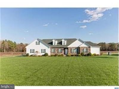 Georgetown Single Family Home For Sale: 20637 State Forest Road