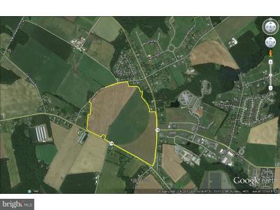 Residential Lots & Land For Sale: 182 Ac Milford Harrington Highway