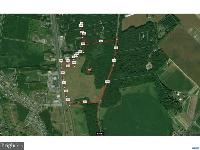 Greenwood Residential Lots & Land For Sale: 12423 N Sussex Highway