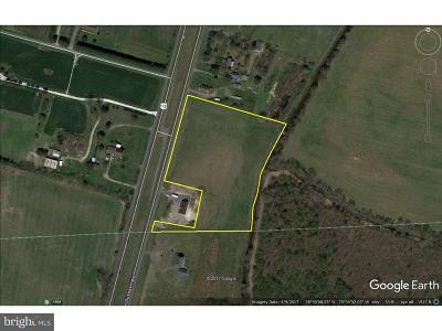 Greenwood Residential Lots & Land For Sale: 4.94 Ac S Dupont Highway