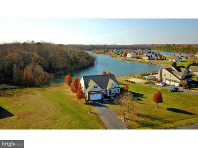 Georgetown Single Family Home For Sale: 22493 Lakeshore Drive