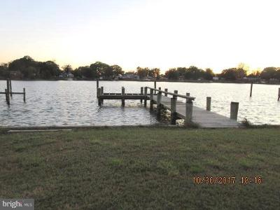 Calvert County, Charles County, Saint Marys County Single Family Home For Sale: 16183 Cobb Island Road