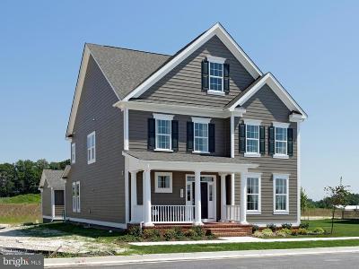 Baltimore Single Family Home For Sale: 6408 Greenleigh Avenue
