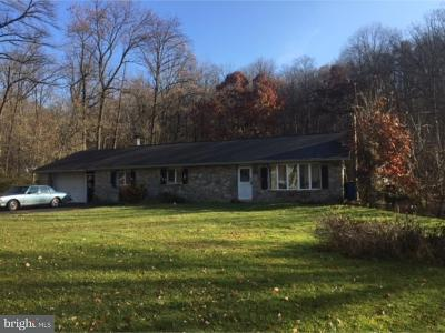 Mohnton Single Family Home For Sale: 4682 New Holland Road