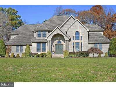 Milford Single Family Home For Sale: 19 Lake Crest Drive