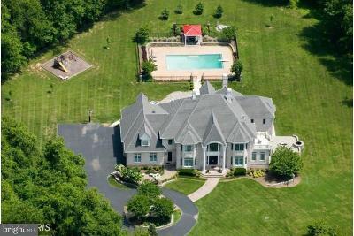 Potomac Single Family Home For Sale: 13505 Magruder Farm Court