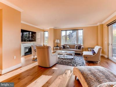 Baltimore Single Family Home For Sale: 801 Key Highway #336