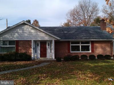 Shippensburg Single Family Home For Sale: 412 Lurgan Avenue