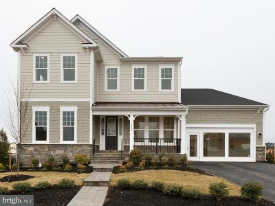 Leesburg Single Family Home For Sale: 1009 Akan Street SE