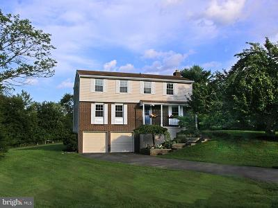 Great Falls Single Family Home For Sale: 10616 Runaway Lane
