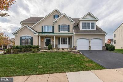 Leesburg Single Family Home For Sale: 43838 Kittiwake Drive