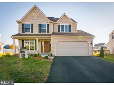 Felton Single Family Home For Sale: 59 Paige Place