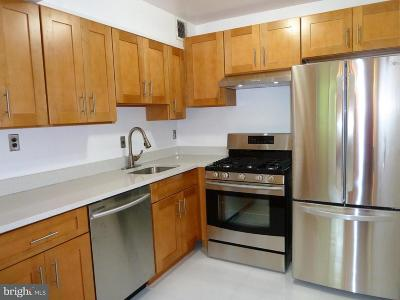 Silver Spring Townhouse For Sale: 95 Wayne Avenue #403