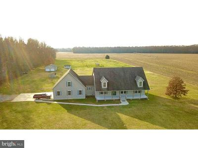 Lewes Single Family Home For Sale: 20366 Hopkins Road