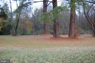 Trappe Residential Lots & Land For Sale: 4697 Old Trappe Road