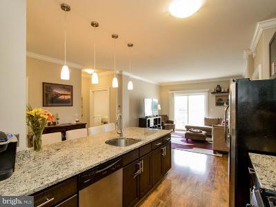 Alexandria Single Family Home For Sale: 6301 Edsall Road #613