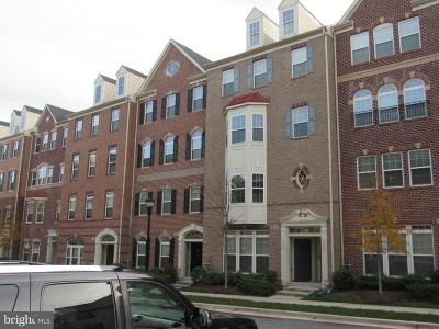 Bowie Townhouse Active Under Contract: 908 Hall Station Drive #102