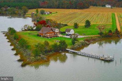Calvert County, Saint Marys County Single Family Home For Sale: 50166 Dove Cove Road