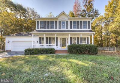 Fredericksburg Single Family Home For Sale: 3512 Overview Drive