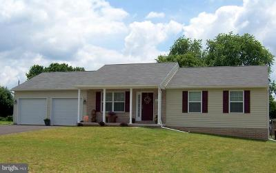 Hagerstown Single Family Home For Sale: 313 Willowbrook Way