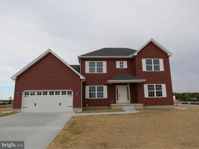 Felton Single Family Home For Sale: 58 Spring Dale Lane