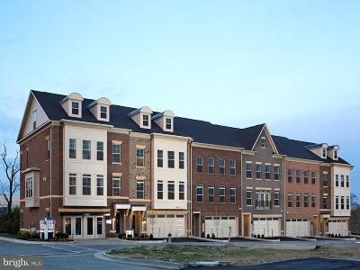 Rockville Townhouse For Sale: Travilah Crest Terrace