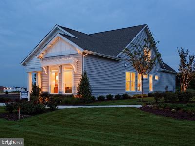 Easton Village Single Family Home For Sale: 28197 Hemmersley Street