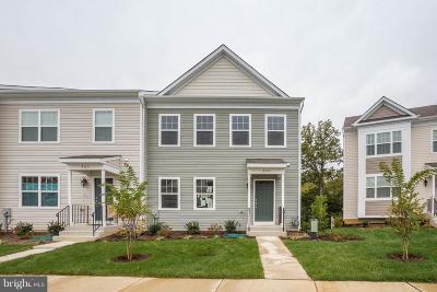 Calvert County Single Family Home For Sale: 559 English Oak Lane