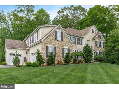 Garnet Valley Single Family Home For Sale: 1117 Darczuk Drive