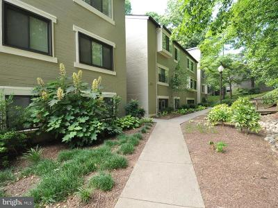 Reston, Herndon Townhouse For Sale: 11721 Karbon Hill Ct. #T1